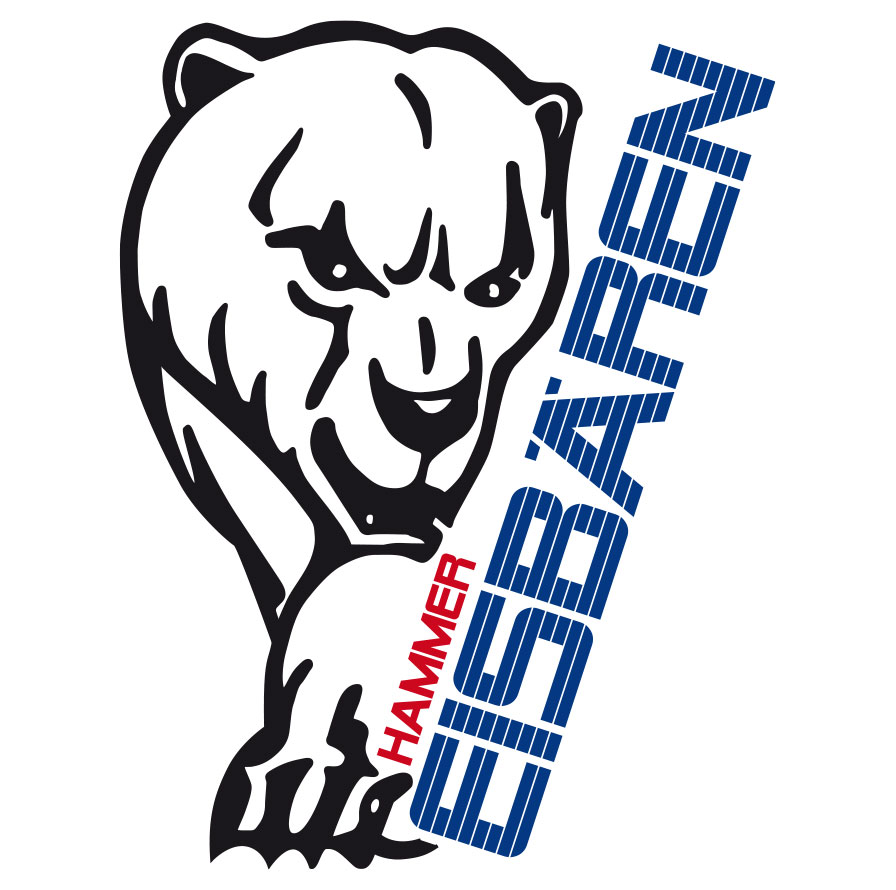 Logo Hammer Eisbaeren